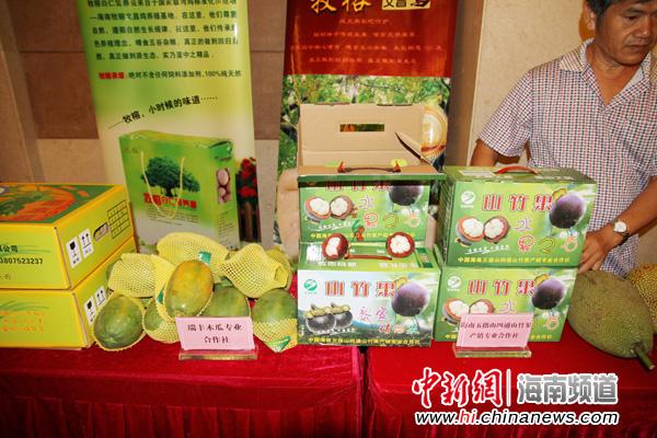 科技110农博商城新闻推介会上展示的海南绿色无公害优质农产品。吴天军摄