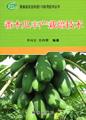 番木瓜丰产栽培技术