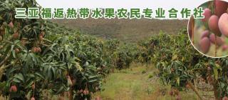 福返热带水果·三亚