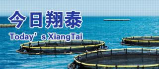 翔泰渔业·澄迈