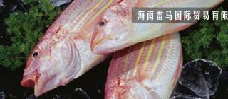 海南雷马国际贸易有限公司·儋州