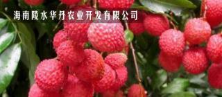 海南陵水华丹农业开发有限公司·陵水