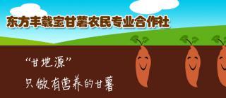 东方市丰载宝甘薯农民专业合作社·东方