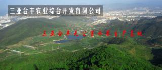三亚合丰农业综合开发有限公司·三亚
