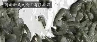 海南新天久食品有限公司·琼海
