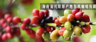 海南省兴隆原产地有机咖啡有限公司·万宁