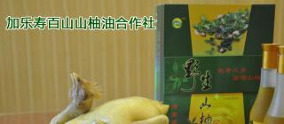 加乐寿百山山柚油 ·澄迈