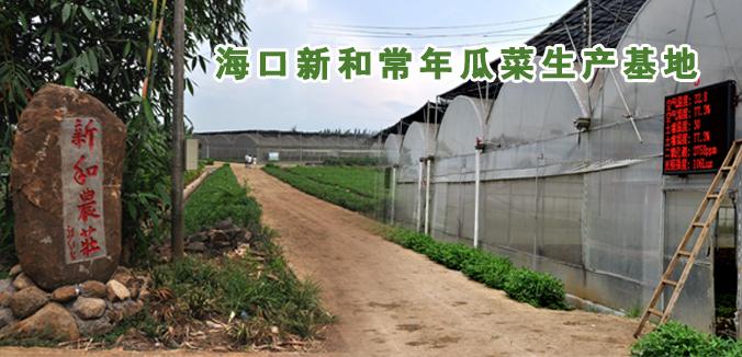 新和农庄·海口