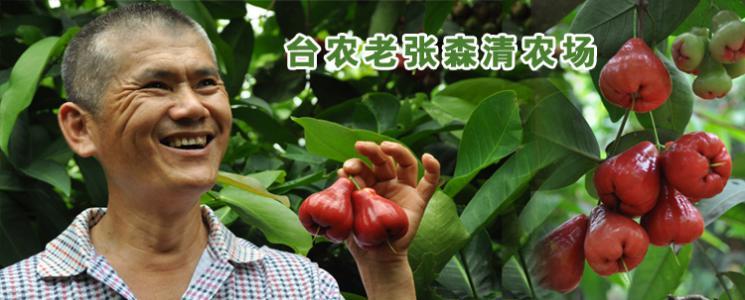 台农老张森清农场 · 琼海