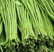 豆角栽培方法