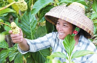 育才特色产业助推村民家门口就业
